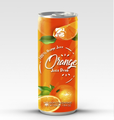 Fruit Juice Drink With Orange Flavour 500 ml